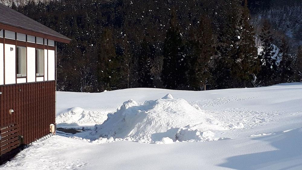雪室貯蔵による検証試験開始